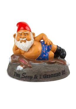 Gartenzwerg - I´m sexy and i gnome it