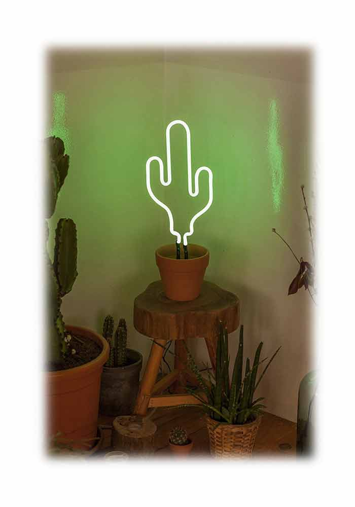 neon kaktus lampe neon cactus ebay. Black Bedroom Furniture Sets. Home Design Ideas